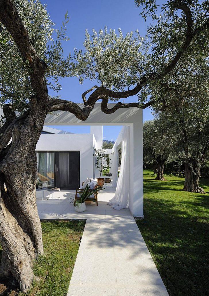 Современная вилла с белоснежной террасой в оливковой роще в Греции